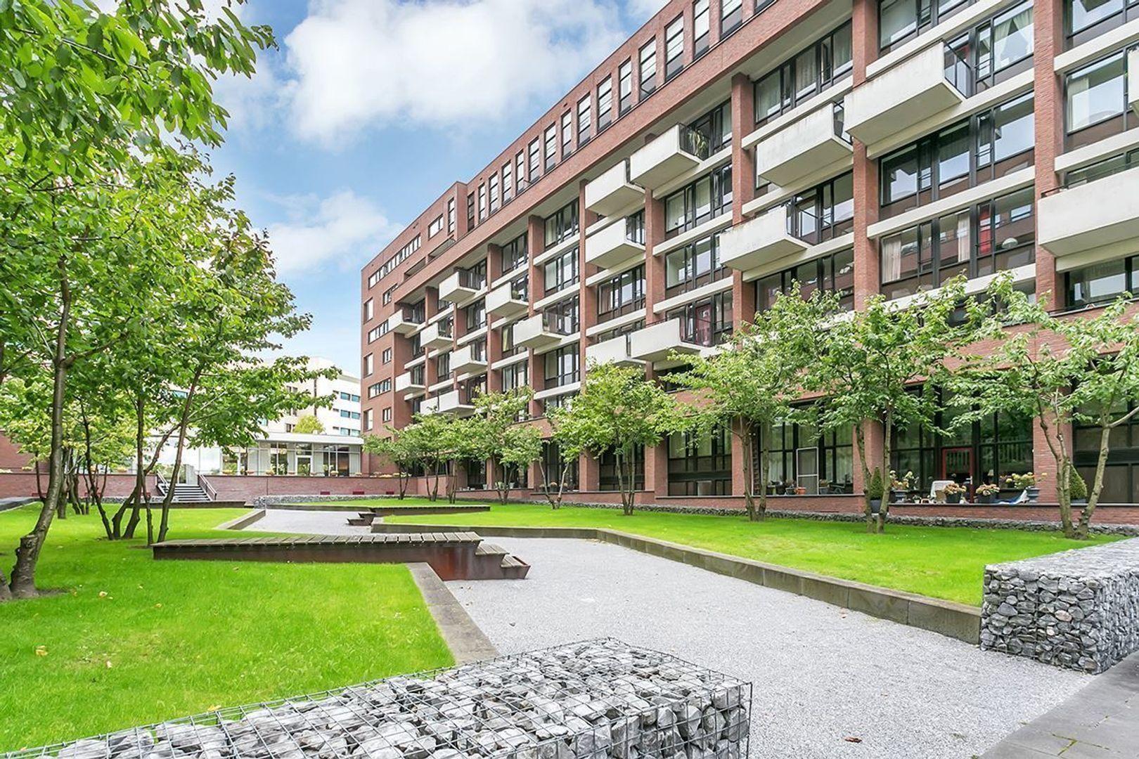 Lichtstraat, Eindhoven foto-26