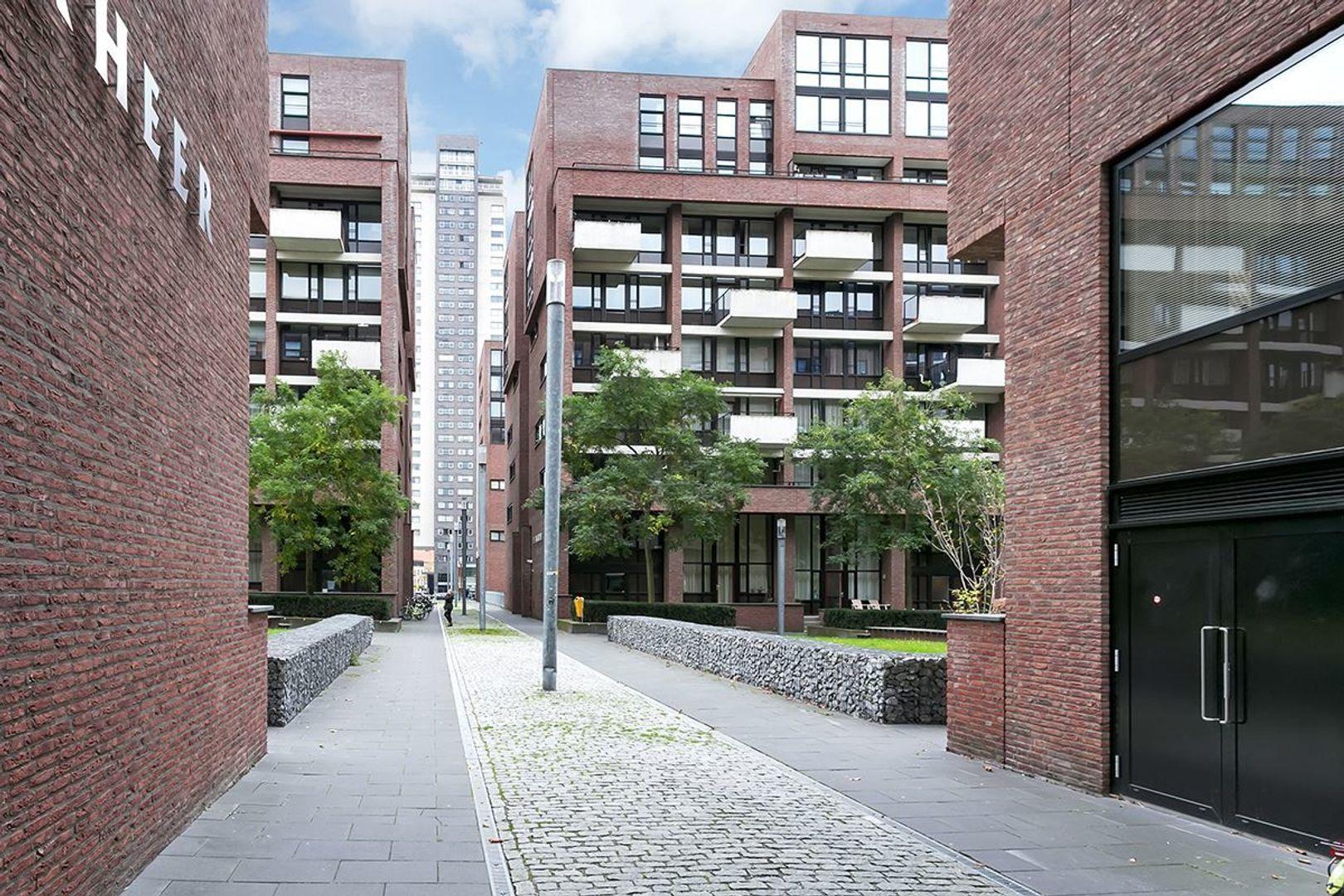 Lichtstraat, Eindhoven foto-22