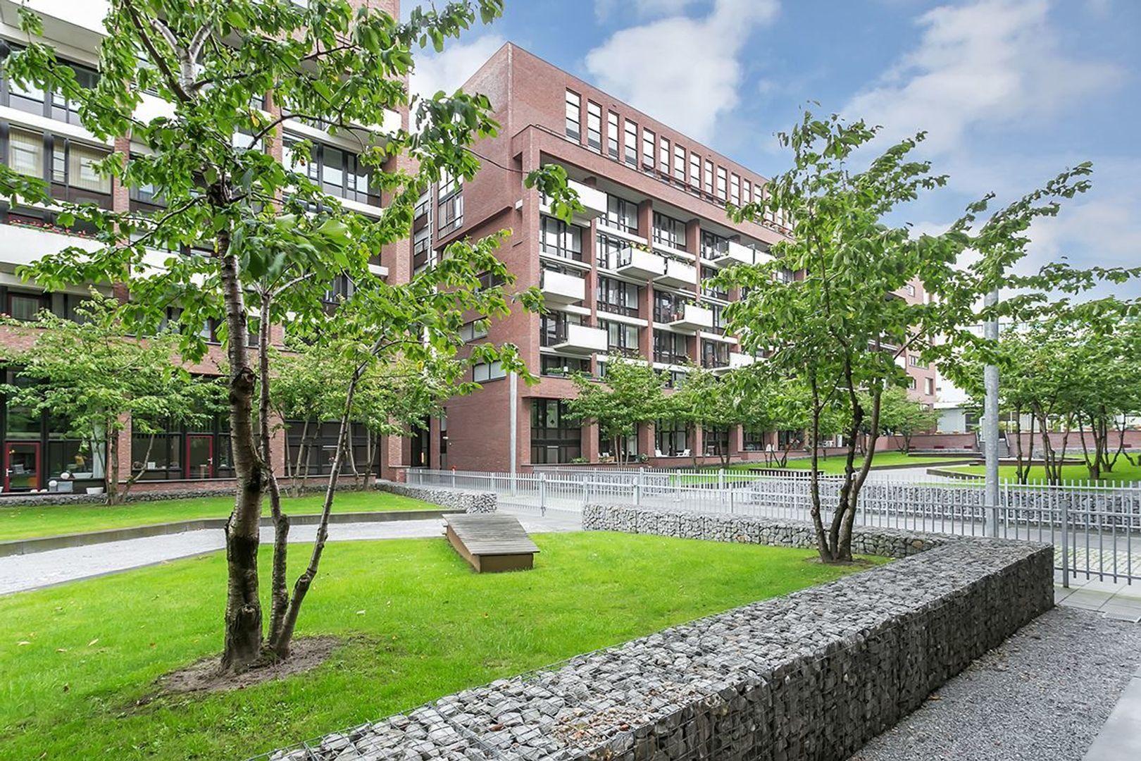 Lichtstraat, Eindhoven foto-27