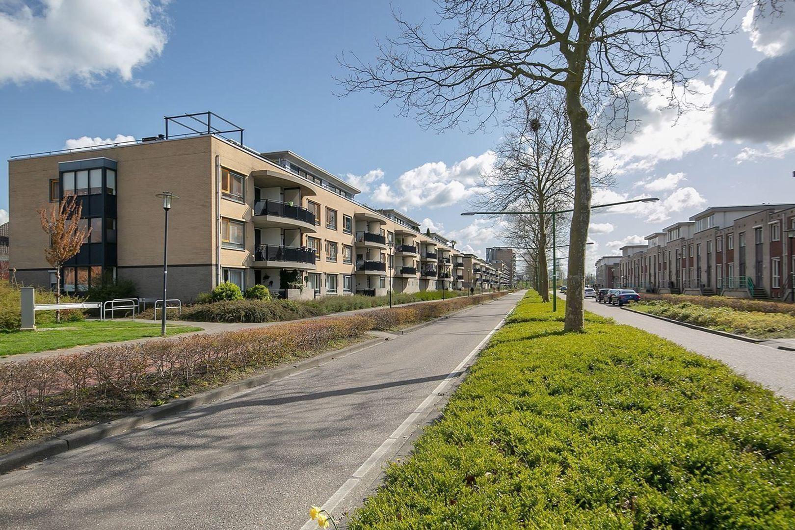 Salieristraat, Capelle aan den IJssel foto-26