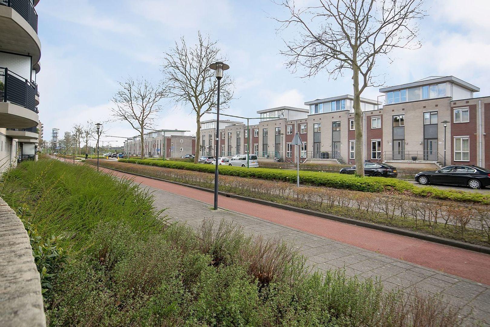 Salieristraat, Capelle aan den IJssel foto-19