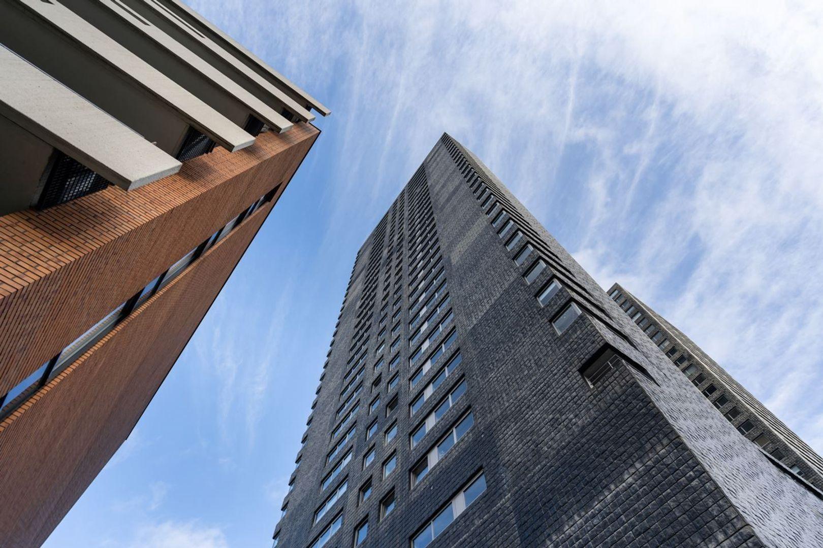 Gedempte Zalmhaven, Rotterdam foto-35
