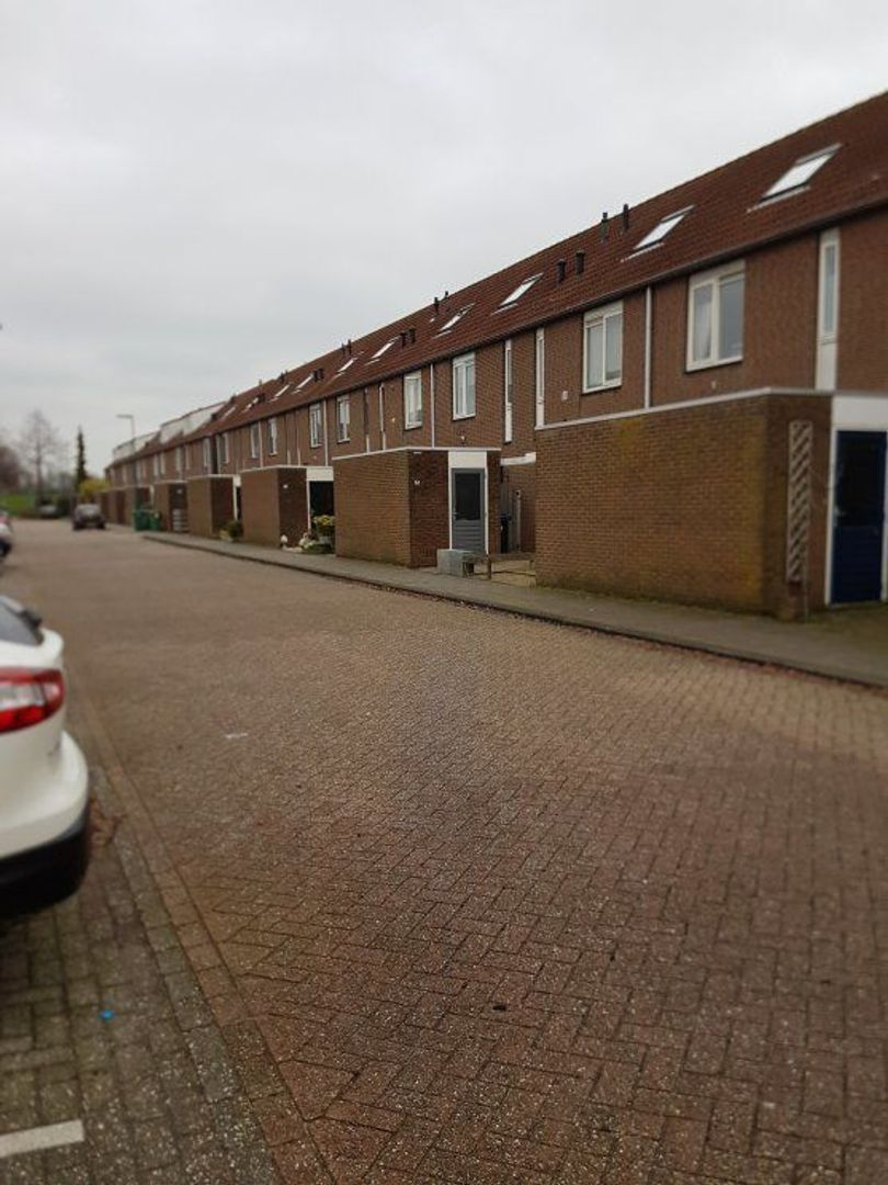 Aloëbruin 56, Zoetermeer foto-1