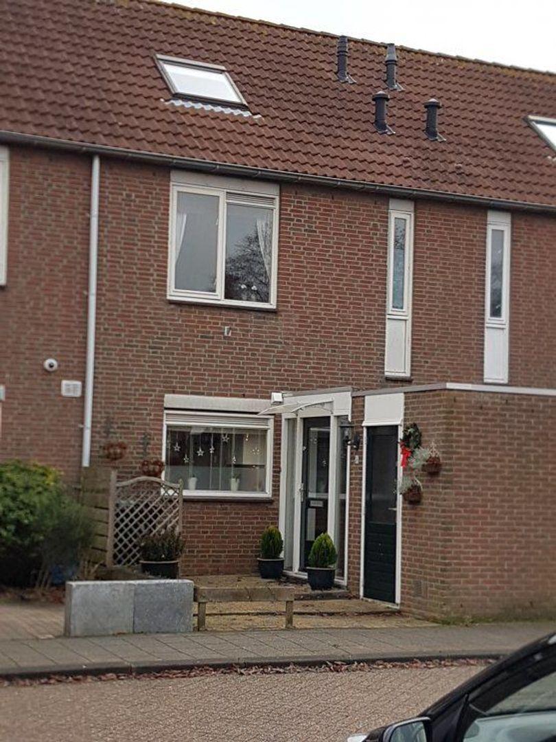 Aloëbruin 56, Zoetermeer foto-0