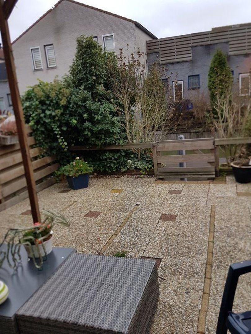 Aloëbruin 56, Zoetermeer foto-26