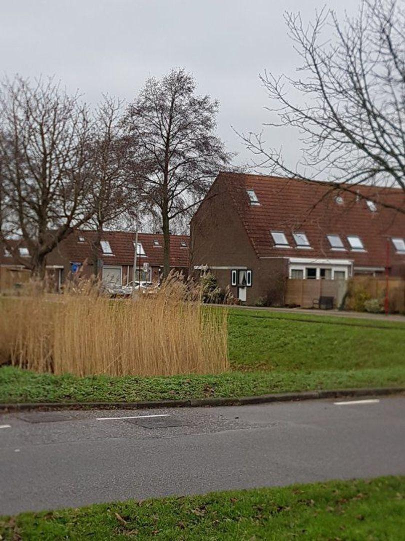 Aloëbruin 56, Zoetermeer foto-52