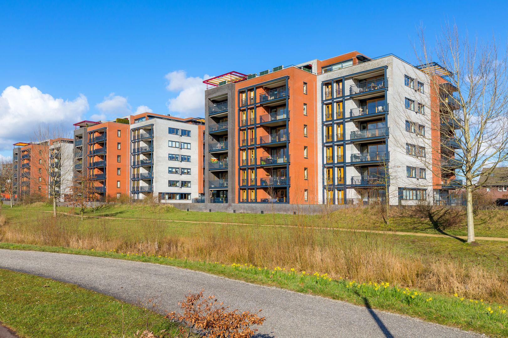 Grasbaan, Eindhoven foto-13 blur